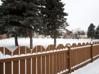 Photo 42: 49 Armstrong Street in Portage la Prairie: House for sale : MLS®# 202029785