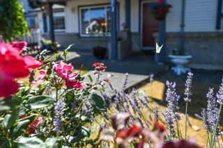 Photo 10: 2871 Penrith Ave in : CV Cumberland House for sale (Comox Valley)  : MLS®# 883133