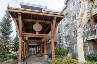 """Photo 33: 216 5700 ANDREWS Road in Richmond: Steveston South Condo for sale in """"RIVERS REACH"""" : MLS®# R2543939"""