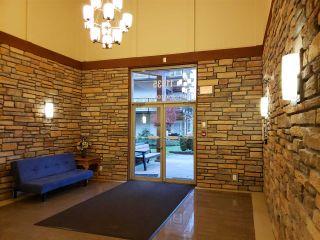 "Photo 21: 312 11935 BURNETT Street in Maple Ridge: East Central Condo for sale in ""Kensington Park"" : MLS®# R2529205"