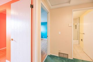 Photo 10: 639 TEMPLESIDE Road NE in Calgary: Temple Detached for sale : MLS®# A1136510