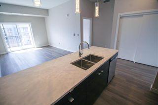 Photo 8: 305 70 Philip Lee Drive in Winnipeg: Crocus Meadows Condominium for sale (3K)  : MLS®# 202008072