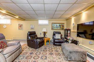 Photo 37: 10536 26 Avenue in Edmonton: Zone 16 House for sale : MLS®# E4241247