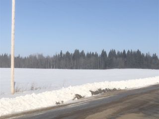 Photo 5: 253 TWP RD 610: Rural Westlock County Rural Land/Vacant Lot for sale : MLS®# E4191859