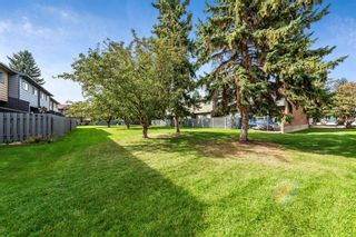Photo 25: 28 9908 Bonaventure Drive SE in Calgary: Willow Park Row/Townhouse for sale : MLS®# A1147501