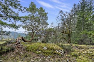 Photo 18: Lot A Armand Way in : GI Salt Spring Land for sale (Gulf Islands)  : MLS®# 871175