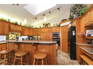 Photo 12: 322 Lakeside Green Place: Chestermere House for sale : MLS®# C4001857