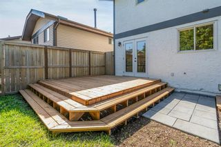 Photo 31: 135 Doverglen Place SE in Calgary: Dover Detached for sale : MLS®# A1058125