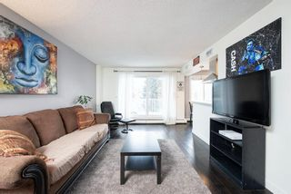 Photo 4: 302C 4455 Greenview Drive in Calgary: Greenview Apartment for sale : MLS®# A1065652