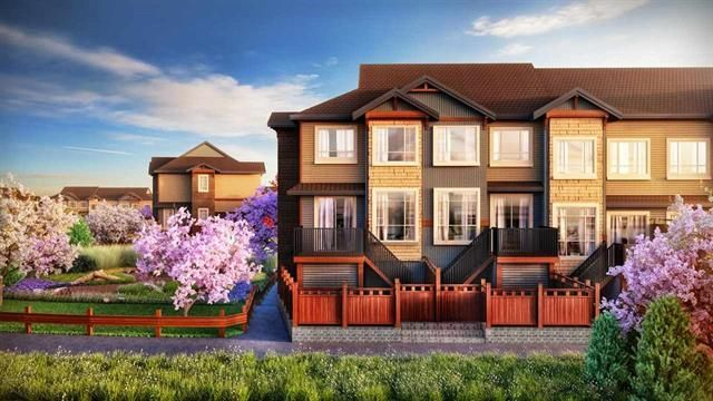 Main Photo: 37 11305 240 Street in Maple Ridge: Townhouse for sale