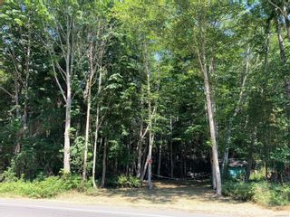 Photo 2: 16&17 Miracle Beach Dr in : CV Merville Black Creek Land for sale (Comox Valley)  : MLS®# 881865