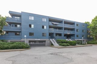 """Main Photo: 101 5906 176A Street in Surrey: Cloverdale BC Condo for sale in """"Wydham estates"""" (Cloverdale)  : MLS®# R2286644"""