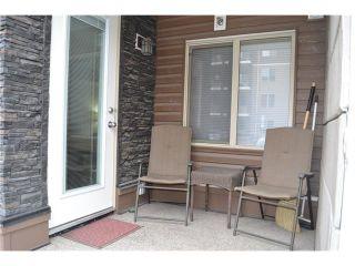 Photo 18: #113 7110 80 AV NE in Calgary: Saddle Ridge Condo for sale : MLS®# C4051517