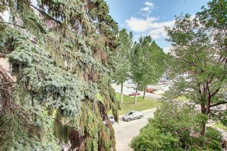 Photo 34: 406 501 57 Avenue SW in Calgary: Windsor Park Apartment for sale : MLS®# A1142596