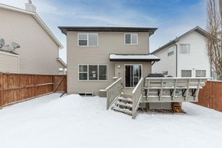 Photo 46: 218 Citadel Estates Heights NW in Calgary: Citadel Detached for sale : MLS®# A1073661