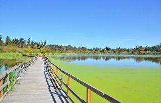 Photo 41: 978 Darwin Ave in : SE Swan Lake House for sale (Saanich East)  : MLS®# 876417