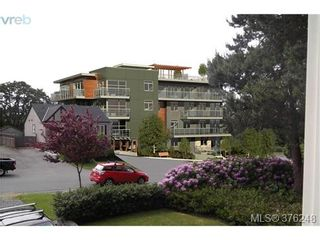 Photo 8: 303 2921 Earl Grey St in VICTORIA: SW Gorge Condo for sale (Saanich West)  : MLS®# 755174