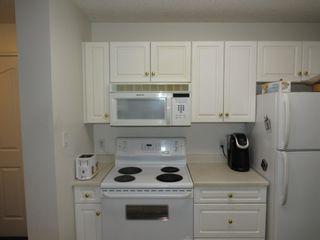 Photo 6: 317 10511 42 Avenue in Edmonton: Zone 16 Condo for sale : MLS®# E4248739