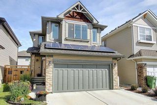 Photo 4: 1023 BRIGHTONCREST Green SE in Calgary: New Brighton Detached for sale : MLS®# A1014253
