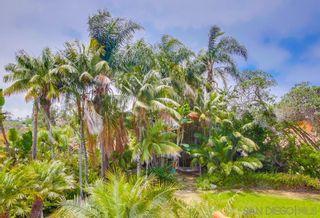 Photo 26: LA JOLLA House for rent : 6 bedrooms : 6352 Castejon Dr
