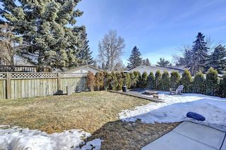 Photo 27: 47 Stafford Street: Crossfield House for sale : MLS®# C4179003