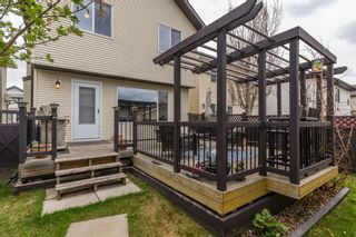 Photo 30: 126 Cranberry Way SE in Calgary: Cranston Detached for sale : MLS®# A1108441