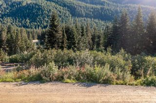 Photo 7: 20488 EDELWEISS Drive in Mission: Hemlock Land for sale : MLS®# R2614462