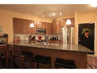 Photo 3: # 107 245 ROSS DR in New Westminster: Fraserview NW Condo for sale : MLS®# V1035272