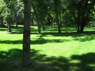 Photo 4: 3134 Assiniboine Avenue in WINNIPEG: Westwood / Crestview Residential for sale (West Winnipeg)  : MLS®# 1217432