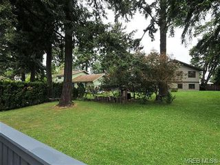 Photo 18: 1070 Lucas Ave in VICTORIA: SE Lake Hill House for sale (Saanich East)  : MLS®# 642307