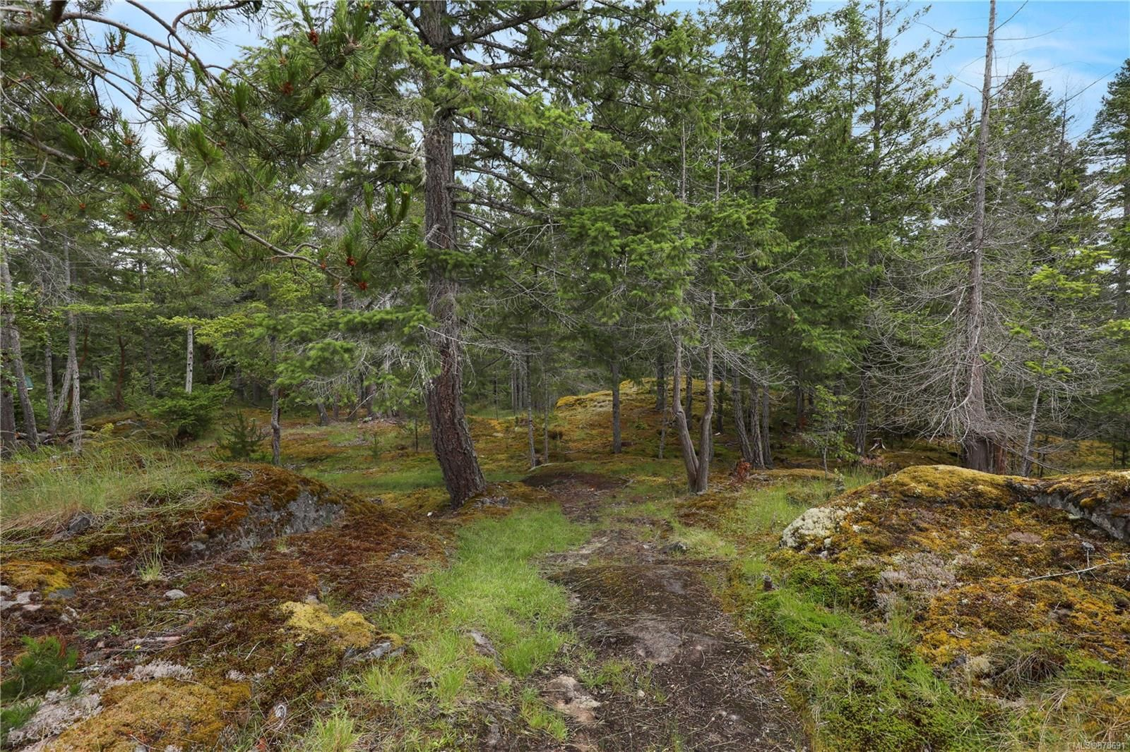 Photo 34: Photos: 979 Thunder Rd in : Isl Cortes Island House for sale (Islands)  : MLS®# 878691