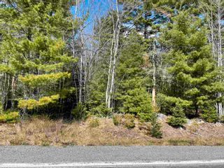Photo 10: Lot VH-1 Highway 10 in Meisners Section: 405-Lunenburg County Vacant Land for sale (South Shore)  : MLS®# 202111350