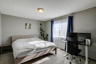 Photo 21: 169 CRANFORD Drive SE in Calgary: Cranston Detached for sale : MLS®# A1086236