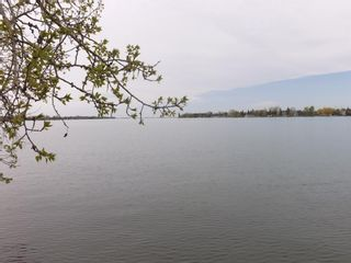 Photo 10: 203 East Chestermere Drive: Chestermere Detached for sale : MLS®# A1077338