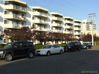 Photo 1: 101 1148 Goodwin St in VICTORIA: OB South Oak Bay Condo for sale (Oak Bay)  : MLS®# 490596
