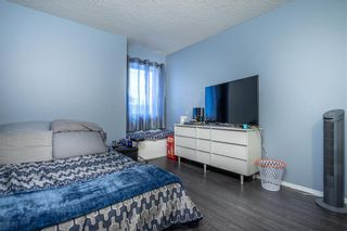 Photo 19: 54 Caldwell Crescent in Winnipeg: Whyte Ridge Residential for sale (1P)  : MLS®# 202004817