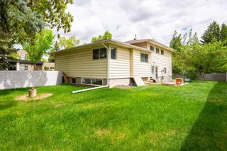 Photo 5: 9623 142 Street in Edmonton: Zone 10 Vacant Lot for sale : MLS®# E4240031
