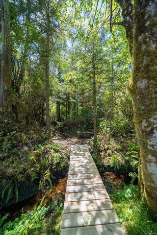 Photo 66: 1321 Pacific Rim Hwy in Tofino: PA Tofino House for sale (Port Alberni)  : MLS®# 878890