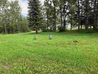 Photo 4: #105 54500 Lac Ste Anne Tr.: Rural Sturgeon County Rural Land/Vacant Lot for sale : MLS®# E4227654