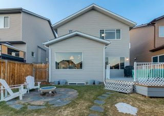 Photo 34: 69 ELGIN MEADOWS Link SE in Calgary: McKenzie Towne Detached for sale : MLS®# A1098607