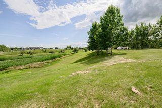 Photo 5: 10A RAINBOW Boulevard in Rural Rocky View County: Rural Rocky View MD Land for sale : MLS®# A1014377