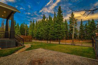Photo 42: 1303 2 Street: Sundre Detached for sale : MLS®# A1047025