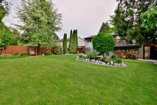 Photo 47: 20801 MCFARLANE Avenue in Maple Ridge: Southwest Maple Ridge House for sale : MLS®# R2065058