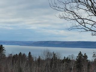 Photo 5: Lot Pickup Road in Clementsport: 400-Annapolis County Vacant Land for sale (Annapolis Valley)  : MLS®# 202101029
