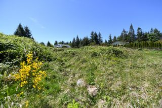 Photo 8: 2267 Seabank Rd in : CV Courtenay North Land for sale (Comox Valley)  : MLS®# 876071