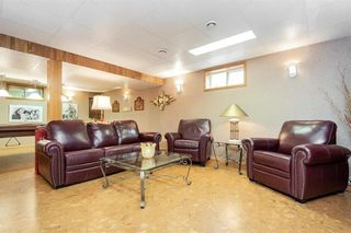 Photo 27: 179 Diane Drive in Winnipeg: Lister Rapids Residential for sale (R15)  : MLS®# 202107645