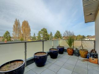 Photo 19: 301 1515 Redfern St in : Vi Jubilee Condo for sale (Victoria)  : MLS®# 873995