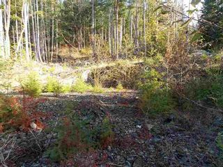 Photo 5: LOT 105 JOHNSTON HEIGHTS ROAD in Sunshine Coast: Home for sale : MLS®# R2244687