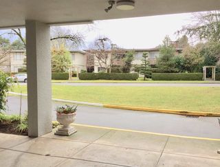"""Photo 19: 104 6076 TISDALL Street in Vancouver: Oakridge VW Condo for sale in """"THE MANSION HOUSES ESTATES LTD"""" (Vancouver West)  : MLS®# R2230391"""