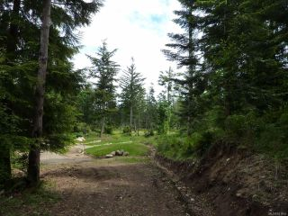 Photo 12: SL 14 950 Heriot Bay Rd in QUADRA ISLAND: Isl Quadra Island Land for sale (Islands)  : MLS®# 841835